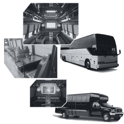Party Bus rental and Limobus rental in Calgary AB